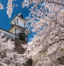 봄 만끽 배리어프리 1DAY, 이시카와현 가나자와 여행