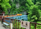 구로베협곡 도롯코(トロッコ)열차기행