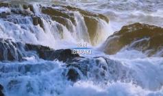 이바라키 랜선여행①-이바라키현 사계